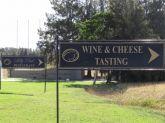 Wine Tasting & Wine Farms